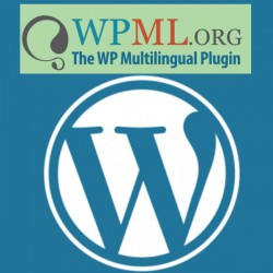 Wordpress WPML + installazione